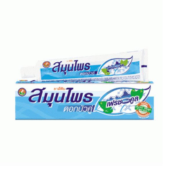 Зубная паста Twin Lotus Herbal Fresh&Cool 40г